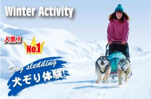 キャンピングカー|レンタル|札幌小金湯さくら|RVパーク|ノースサファリ|札幌|犬ぞり|ハスキー犬|ウィンタースポーツ