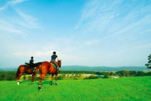 キャンピングカー|レンタル|RVパーク|栃木県|那須高原|ホテル・フロラシオン那須|温泉|那須ハイランドパーク|渓流体験|ニジマス|犬保護活動|アイランドホースリゾート|乗馬