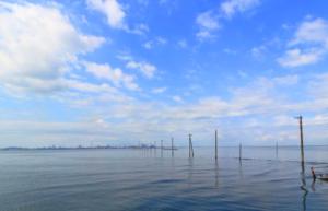キャンピングカー|レンタル|アウトドア|スポット|いちご狩り|フルーツ|食べ放題|いちご館|窪田|山梨|甲府|潮干狩り|アサリ|ハマグリ|江川海岸