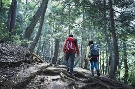 登山|山|関東